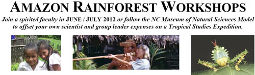 2012 amazon rainforest workshops