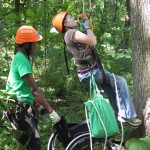 Ascending into the canopy, with Snousha Glaude.
