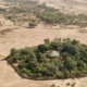 Biodiversity thrives in Ethiopia's church forests