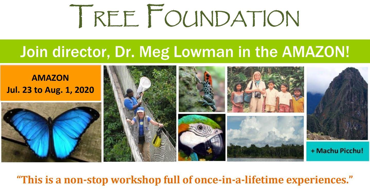 CanopyMeg - Official Website of Dr. Meg Lowman
