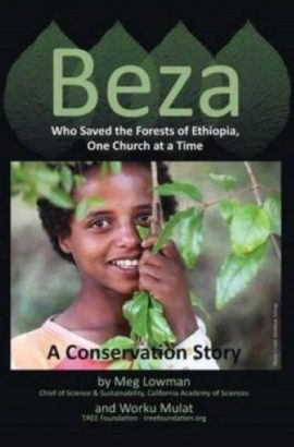 beza resized for book page